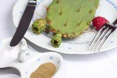 γεύμα κάκτων Στοκ εικόνα με δικαίωμα ελεύθερης χρήσης