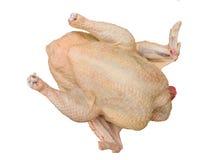 γεύμα κοτόπουλου Στοκ Φωτογραφίες