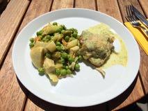 Γεύμα κοτόπουλου Στοκ εικόνες με δικαίωμα ελεύθερης χρήσης