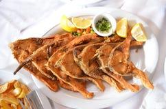 Γεύμα κυπρίνων που μαγειρεύεται παραδοσιακά με το λεμόνι και τα τσιπ Στοκ Εικόνες