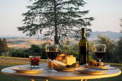 Γεύμα με το κρασί Στοκ Εικόνες
