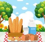 Γεύμα πικ-νίκ στο πάρκο ελεύθερη απεικόνιση δικαιώματος