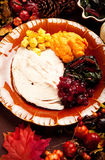 γεύμα Τουρκία Στοκ φωτογραφίες με δικαίωμα ελεύθερης χρήσης