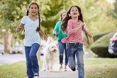 Γιαγιά και εγγονές που περπατούν το σκυλί κατά μήκος της προαστιακής οδού στοκ εικόνα με δικαίωμα ελεύθερης χρήσης