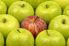 Γιαγιά Σμίθ Apple στοκ φωτογραφία με δικαίωμα ελεύθερης χρήσης