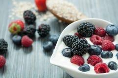 Γιαούρτι δημητριακών μούρων στοκ εικόνες