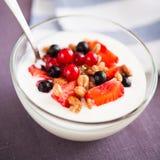 Γιαούρτι με τα δημητριακά και τα μούρα στοκ εικόνα με δικαίωμα ελεύθερης χρήσης