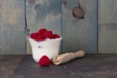 Γιαούρτι φρούτων στοκ φωτογραφίες με δικαίωμα ελεύθερης χρήσης
