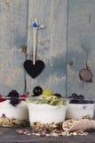 Γιαούρτι φρούτων στοκ φωτογραφίες