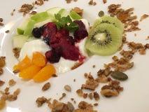 Γιαούρτι φρούτων Στοκ φωτογραφία με δικαίωμα ελεύθερης χρήσης