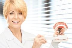 Γιατρός με την οδοντόβουρτσα και τα σαγόνια Στοκ φωτογραφία με δικαίωμα ελεύθερης χρήσης