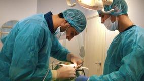 Γιατρός που εξετάζει έναν ασθενή με retractor στο οδοντικό γραφείο απόθεμα βίντεο
