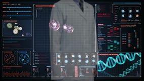 Γιατρός σχετικά με την ψηφιακή οθόνη, κύτταρα αίματος Ανθρώπινο καρδιαγγειακό σύστημα, φουτουριστική ιατρική εφαρμογή Ψηφιακό ενδ απόθεμα βίντεο