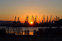 Για να πιάσει τον ήλιο Στοκ Φωτογραφία