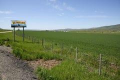 για να χαιρετίσει το Wyoming Στοκ Εικόνες