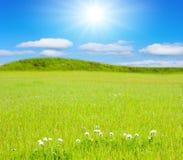 για πάντα λόφοι ηλιόλουστοι στοκ φωτογραφία με δικαίωμα ελεύθερης χρήσης