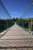 για τους πεζούς αναστολή γεφυρών Στοκ εικόνα με δικαίωμα ελεύθερης χρήσης