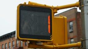 Για τους πεζούς αντίστροφη μέτρηση στάσης Trafficlight απόθεμα βίντεο