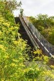 Για τους πεζούς διάβαση πεζών σε ένα πάρκο Στοκ εικόνες με δικαίωμα ελεύθερης χρήσης