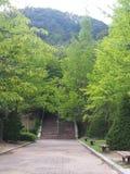 Για τους πεζούς πορεία μεταξύ των δέντρων στις πλευρές στοκ εικόνες με δικαίωμα ελεύθερης χρήσης