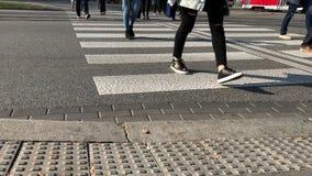 Για τους πεζούς σταυρός πέρα από το δρόμο που οδηγεί πλησίον τις δημόσιες συγκοινωνίες απόθεμα βίντεο