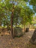 Γιγαντιαία βάζα πετρών Εποχής του σιδήρου στο δασώδες ξέφωτο Οροπέδιο Xiangkhoang, στοκ εικόνες