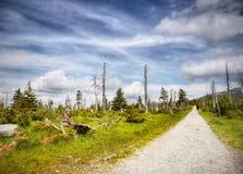 Γιγαντιαία βουνά Πολωνία Στοκ Φωτογραφίες