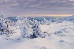Γιγαντιαία βουνά το χειμώνα Στοκ φωτογραφία με δικαίωμα ελεύθερης χρήσης