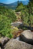 Γιγαντιαία βουνά Τσεχιών Pancavsky vodopad- Στοκ φωτογραφία με δικαίωμα ελεύθερης χρήσης