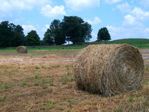 Γιγαντιαίοι ρόλοι σανού στο αγροτικό αγρόκτημα στοκ φωτογραφίες