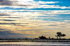 Γιγαντιαίος αφρικανικός ουρανός με τη σκιαγραφία γραμμών δέντρων στοκ εικόνες με δικαίωμα ελεύθερης χρήσης