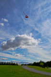 Γιγαντιαίος ικτίνος Στοκ φωτογραφία με δικαίωμα ελεύθερης χρήσης