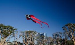 Γιγαντιαίος κόκκινος ικτίνος που απογειώνεται στο χωριό θαλάσσιων λιμένων Στοκ Εικόνες