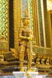 Γιγαντιαίος χρυσός Στοκ Εικόνα
