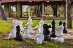 Γιγαντιαίο σκάκι Στοκ Εικόνες