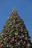 Γιγαντιαίο χριστουγεννιάτικο δέντρο ενάντια στο μπλε ουρανό Στοκ εικόνες με δικαίωμα ελεύθερης χρήσης