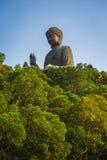 Γιγαντιαίο Tian Tan Βούδας στο Χονγκ Κονγκ Στοκ εικόνα με δικαίωμα ελεύθερης χρήσης