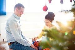 γιορτάζοντας ζεύγος Χρι Στοκ φωτογραφία με δικαίωμα ελεύθερης χρήσης