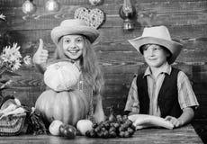 Γιορτάστε τις διακοπές συγκομιδών Τα παιδιά παίζουν το ξύλινο υπόβαθρο λαχανικών Το καπέλο ένδυσης αγοριών κοριτσιών παιδιών γιορ στοκ φωτογραφίες