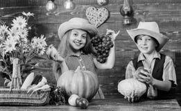 Γιορτάστε το φεστιβάλ συγκομιδών Παιδιά κοντά στο ξύλινο υπόβαθρο λαχανικών Ιδέα φεστιβάλ πτώσης δημοτικών σχολείων Κορίτσι παιδι στοκ εικόνες