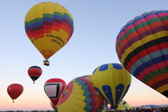 γιορτή μπαλονιών του Αλμπ& Στοκ Εικόνα