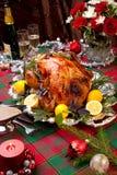 γιορτή Τουρκία Χριστου&gamma Στοκ εικόνα με δικαίωμα ελεύθερης χρήσης
