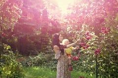 Γιος λαβής μητέρων στα ανθίζοντας τριαντάφυλλα την ειδυλλιακή ηλιόλουστη ημέρα Στοκ Φωτογραφίες