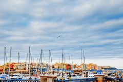 Γιοτ που σταθμεύουν στο λιμάνι στο ηλιοβασίλεμα, λιμενικό γιοτ Tenerife, Κανάρια νησιά Στοκ Εικόνες