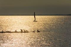 Γιοτ στη θάλασσα στο ηλιοβασίλεμα, ιστιοπλοϊκό Ρομαντικό ταξίδι στο γιοτ πολυτέλειας κατά τη διάρκεια του ηλιοβασιλέματος θάλασσα Στοκ φωτογραφία με δικαίωμα ελεύθερης χρήσης