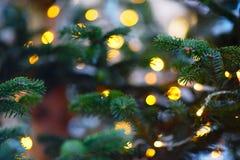 Γιρλάντα χριστουγεννιάτικων δέντρων Θαμπάδα bokeh Στοκ Εικόνα