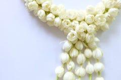 Γιρλάντα jasmine του λουλουδιού Στοκ Φωτογραφία