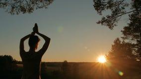Γιόγκα άσκησης γυναικών στο δάσος στο ηλιοβασίλεμα απόθεμα βίντεο