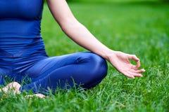 Γιόγκα Νέα περισυλλογή γιόγκας άσκησης γυναικών στη φύση στο πάρκο ο λωτός θέτει Έννοια τρόπου ζωής υγείας στοκ εικόνα με δικαίωμα ελεύθερης χρήσης