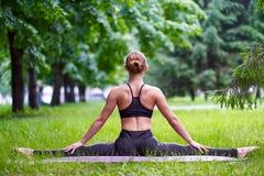 Γιόγκα Νέα περισυλλογή γιόγκας άσκησης γυναικών στη φύση στο πάρκο Έννοια τρόπου ζωής υγείας στοκ φωτογραφία
